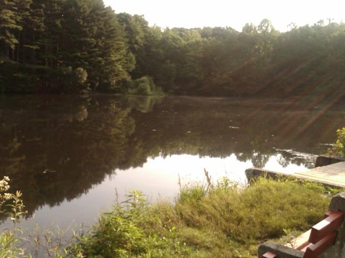 Kaatz Pond