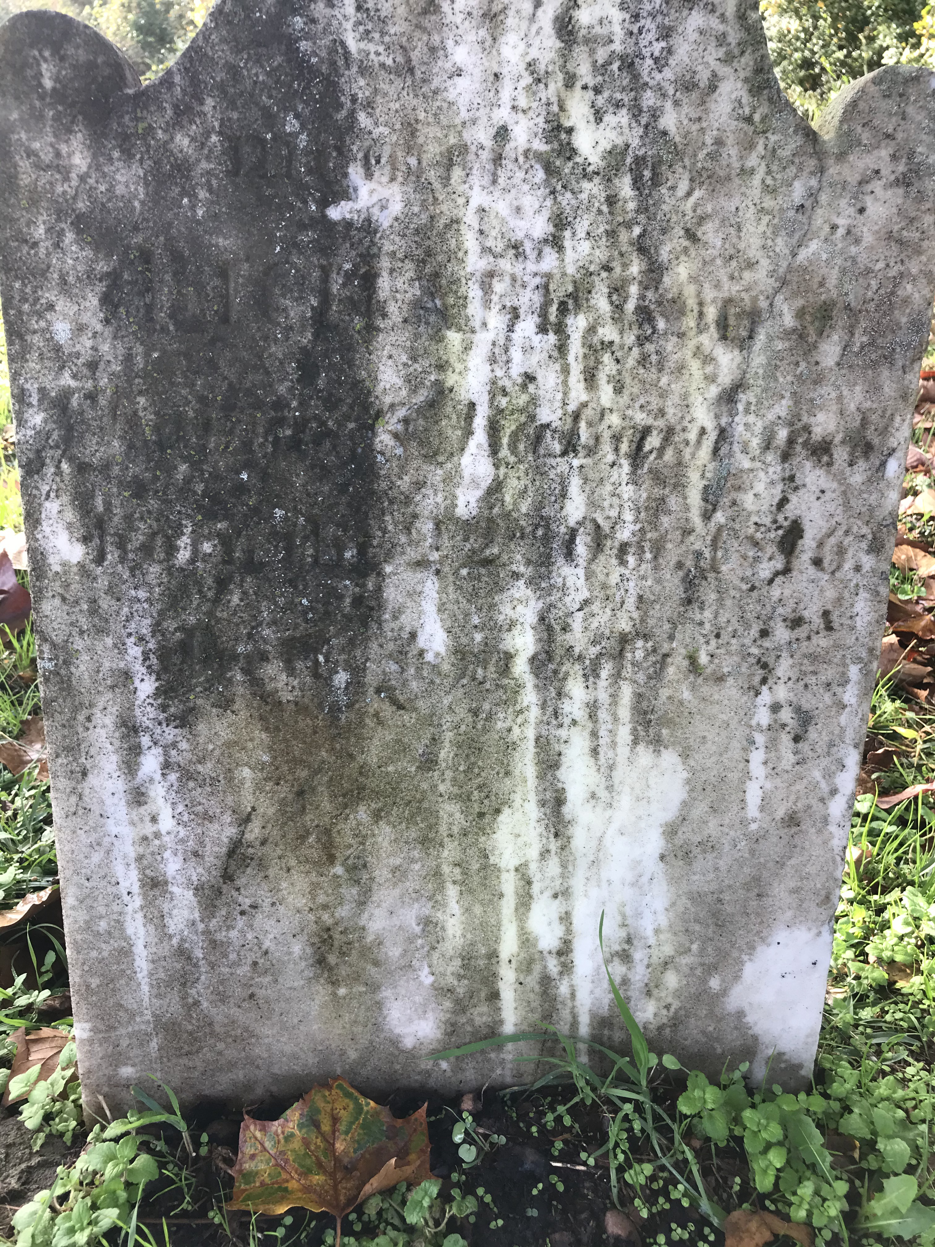 Headstone of Barnswell family member. Lettering has decayed over time.
