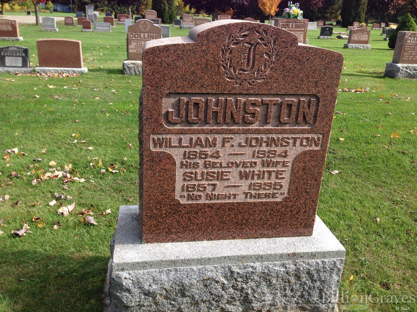 Gov. William F Johnston grave