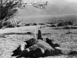 The first grave in the cemetery at Manzanar is that of Matsunosuke Murakami, 62. He had arrived ill on arrival on March 23, 1942, was hospitalized in camp, and died of heart disease on May 16, 1942.