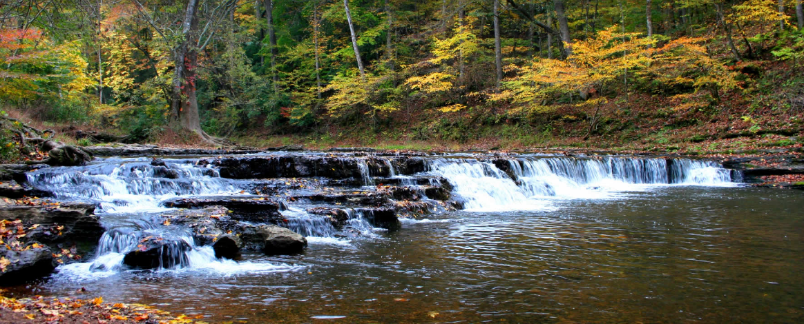 Beautiful water scenery of Shoal Creek inside David Crockett State Park.