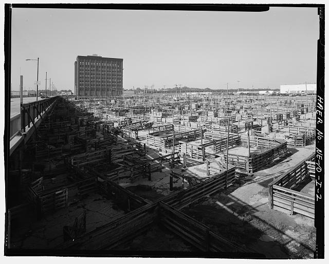 View of the South Omaha Livestock Exchange Building towering over the stockyards. Courtesy of the Library of Congress