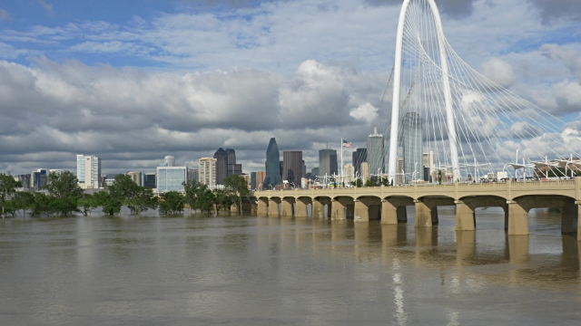 The Ronald Kirk and adjacent Margaret Hunt Hill Bridges span the swollen Trinity River.