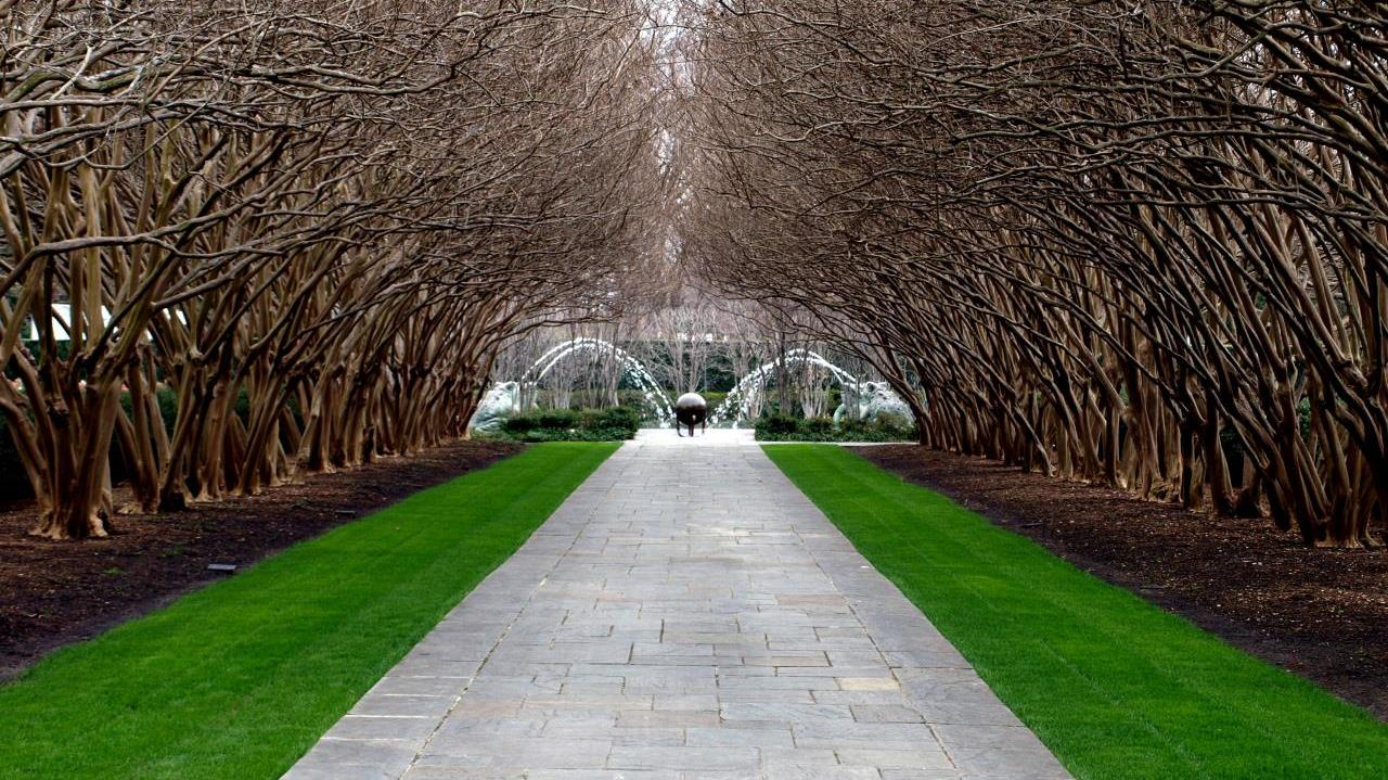 This long archway of trees is just one of the unique features at the arboretum.
