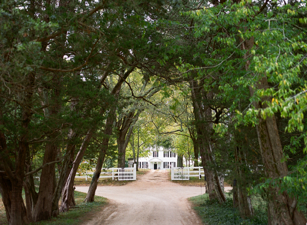 Tree-lined entrance way leading up to the Tuckahoe house
