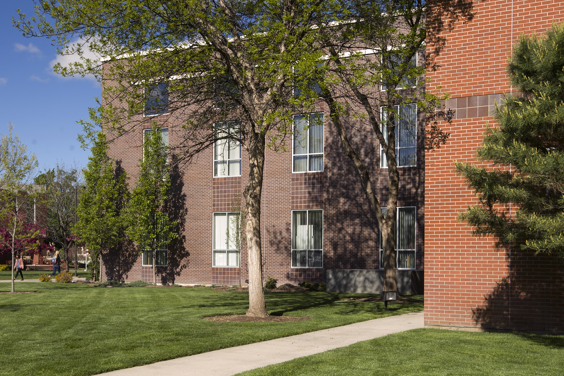 West facing view of the Library showing the difference in brick color of the 1995 addition.