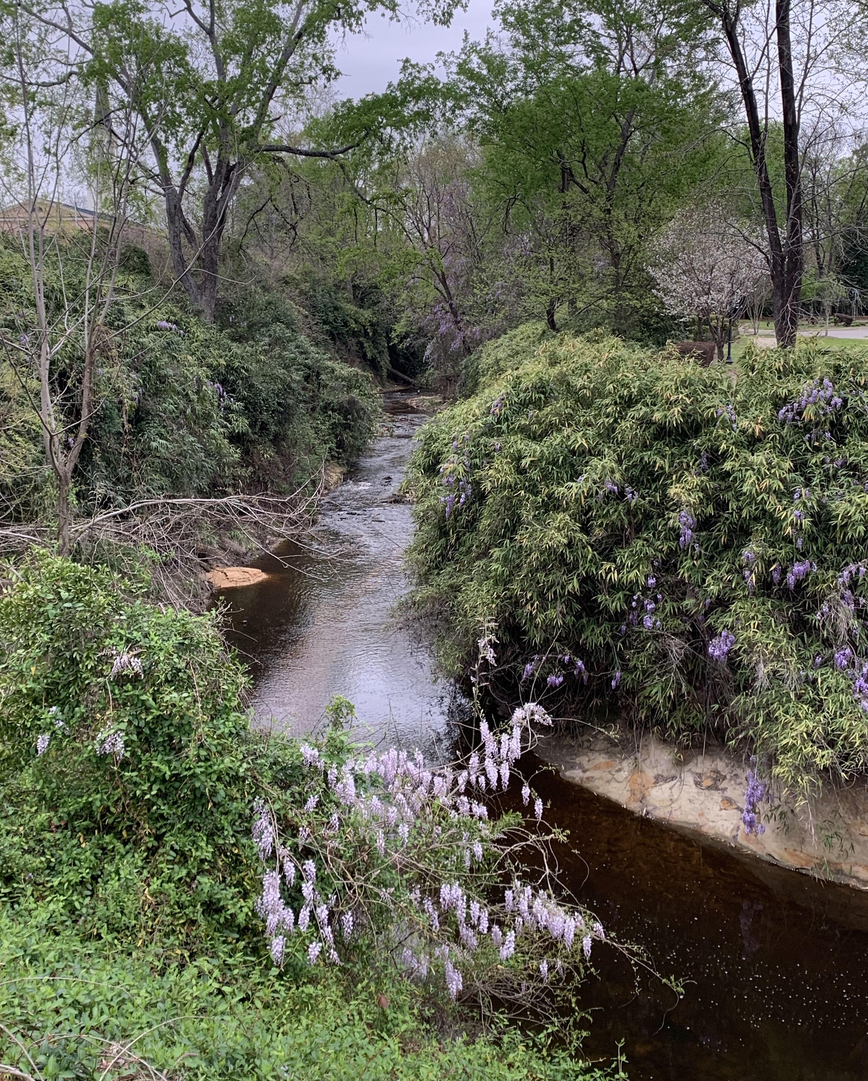 View of Cross Creek by Cool Spring Tavern