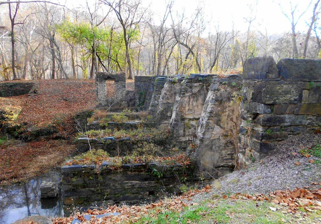 Ruins of the Shenandoah Pulp Company Factory. Image obtained from Panoramio.