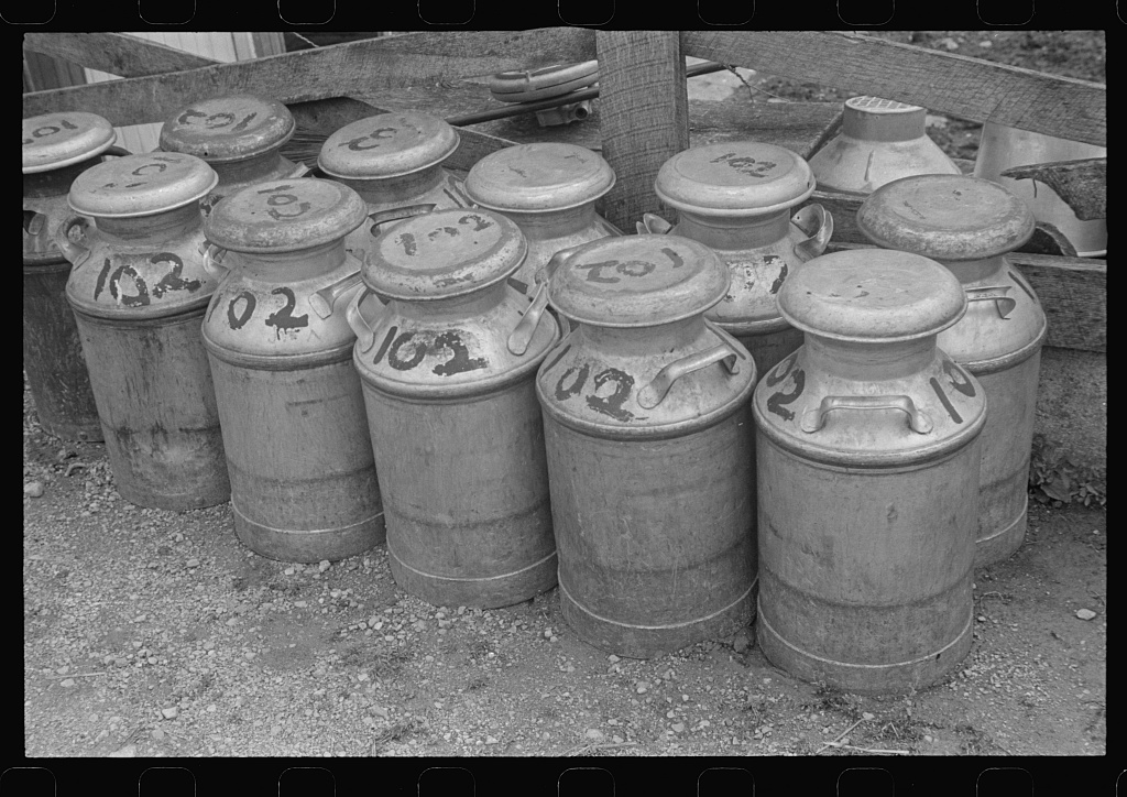 Canisters like these kept milk cool while in transport from the farm to a processing facility.  There, the milk would be pasteurized and bottled for consumer use.  A typical canister held five gallons of milk.
