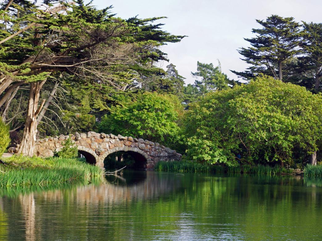 Golden Gate Park Lake