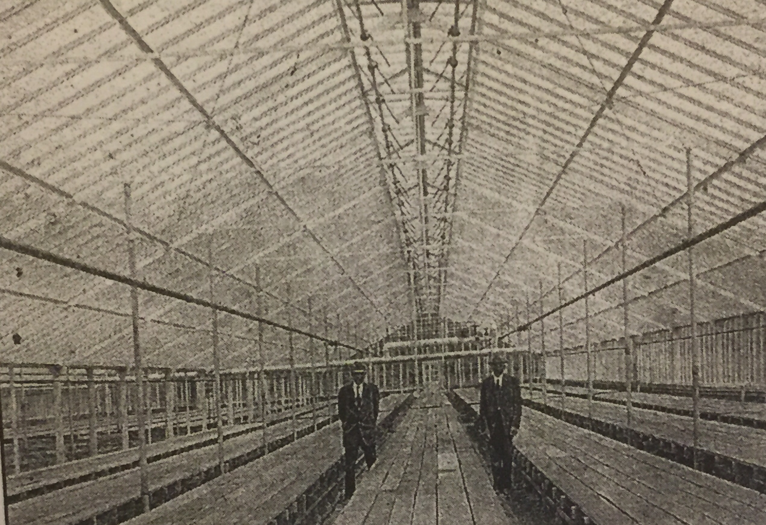 Joseph and Frank Weber in the Ironton greenhouse