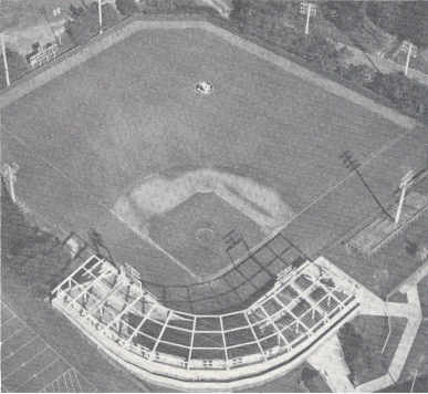 This is what Dick Howser stadium looked like when FSU got their first home victory in their new stadium in 1983.