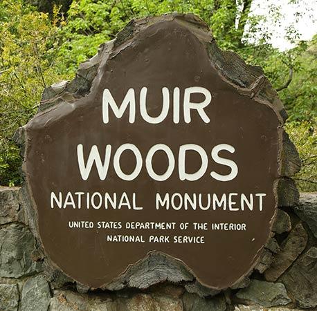 Muir Woods was established in 1908.