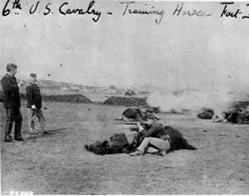 Training Horses at Fort Bayard