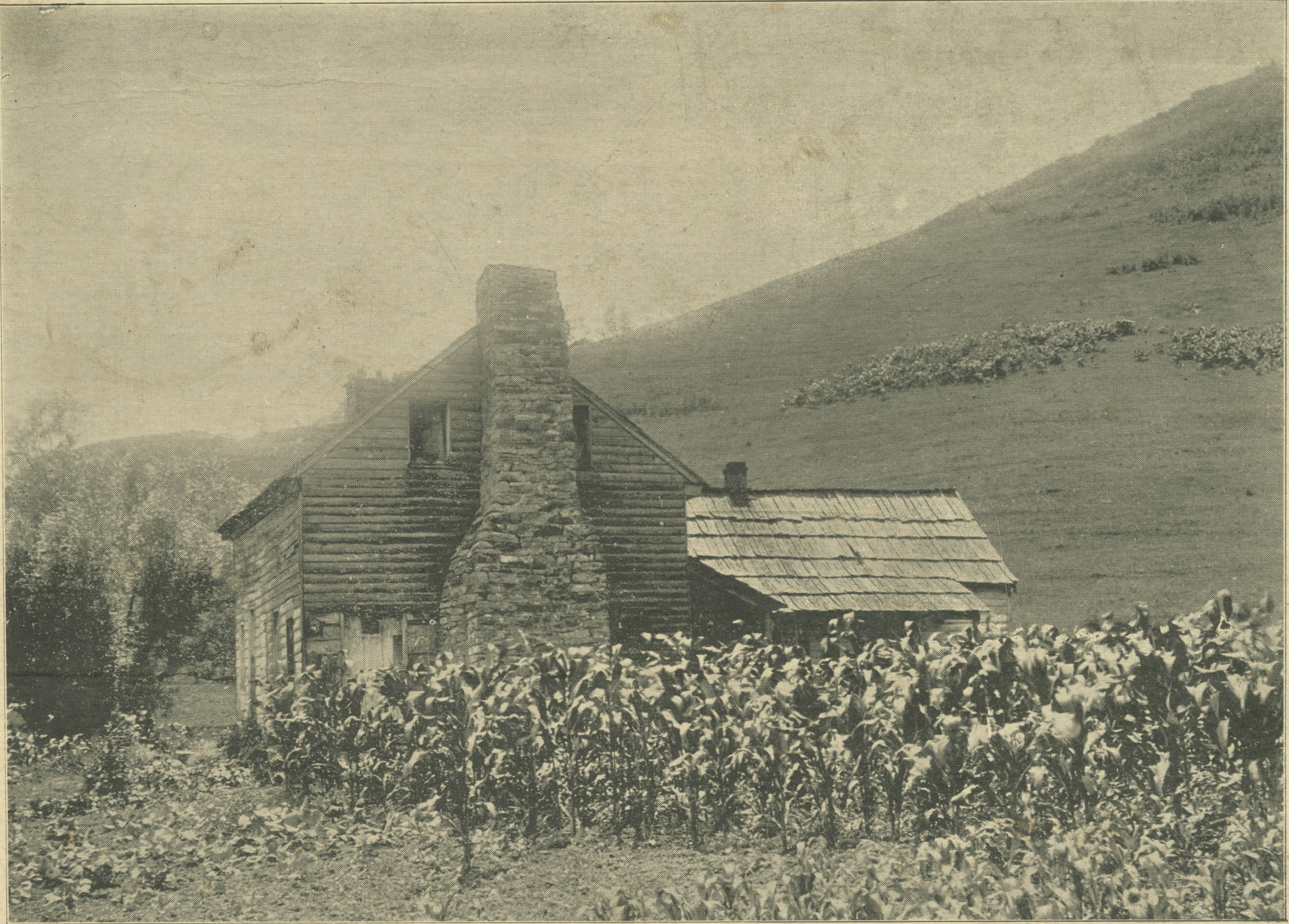Photograph of Elizabeth Russell's cabin taken in 1896 (detail from Broadside 1896.F87 FF), courtesy of the Library of Virginia, Visual Studies Collection.