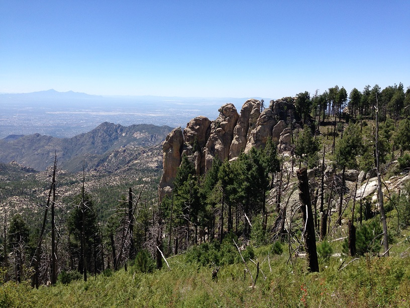 The top of Mount Lemmon, the Mountain that the road was being built to.