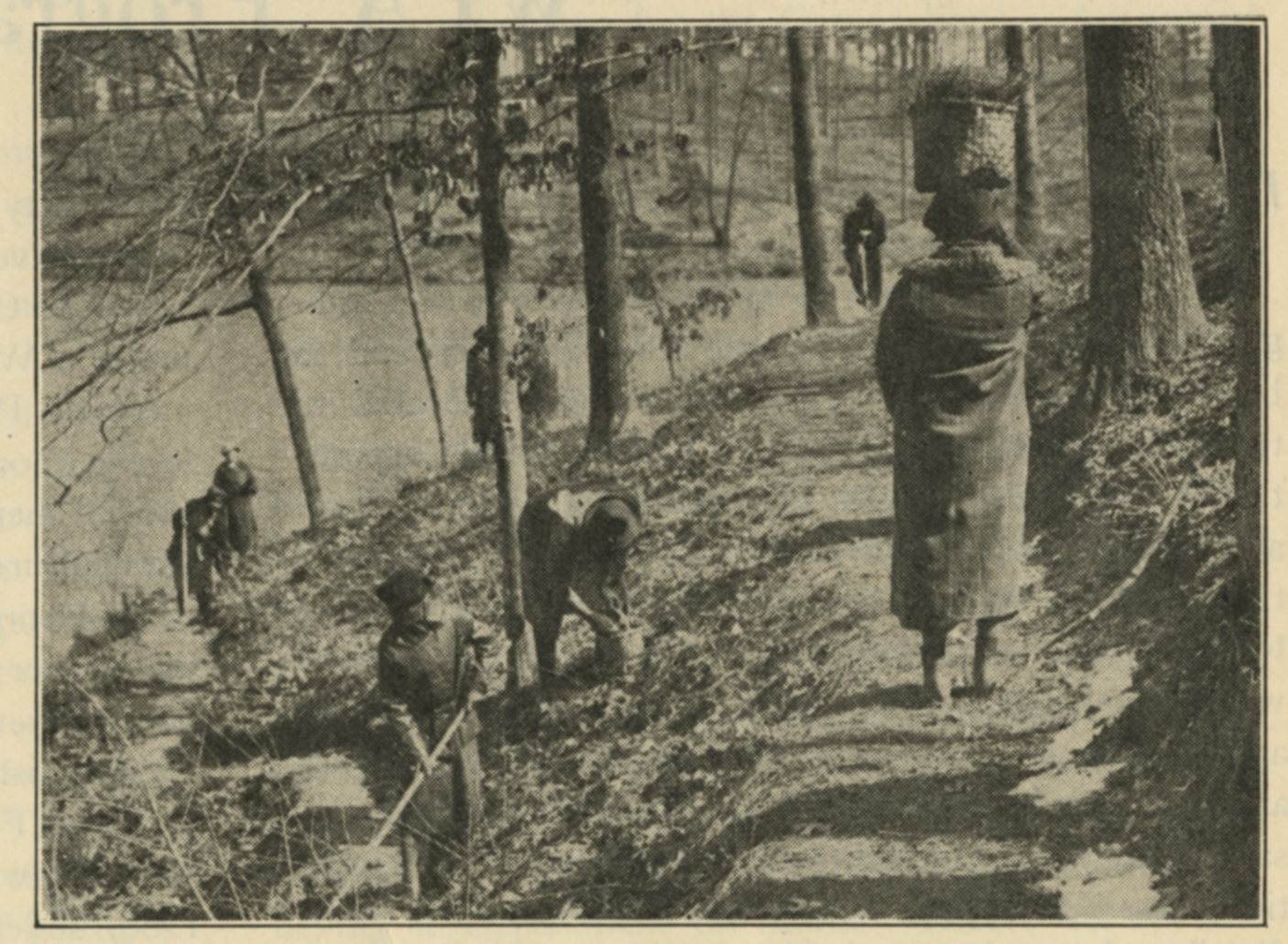 Photograph of women constructing the wildflower and bird sanctuary at Lee Memorial Park, WPA Record (March 1937), image courtesy of the Library of Virginia.