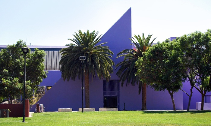 The CDM's purple exterior and unique shape.