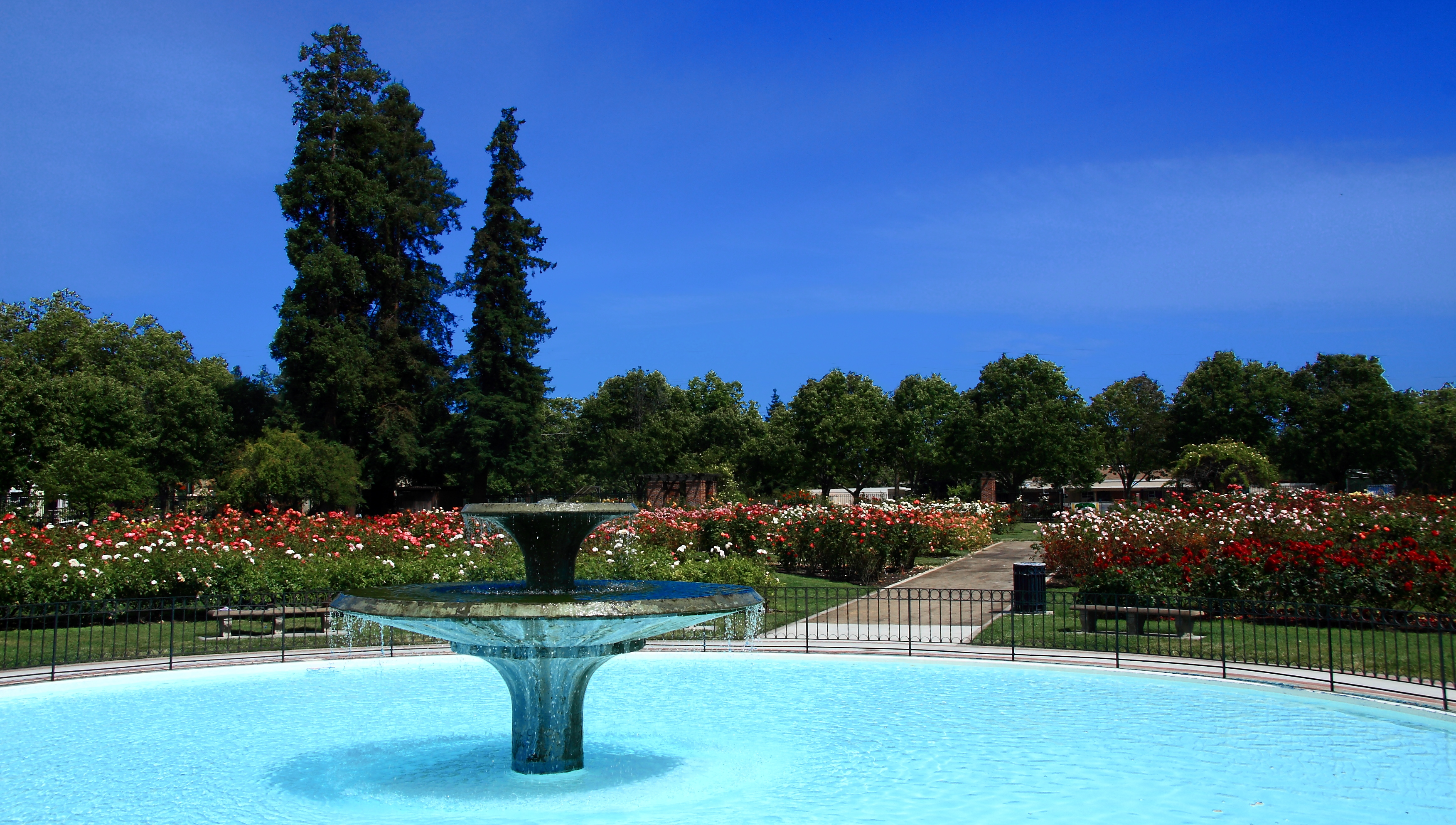 A shot of the fountain in the middle of the Rose Garden.