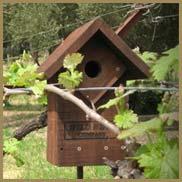 Hawkbox on the property of the Ackerman Family Vineyards
