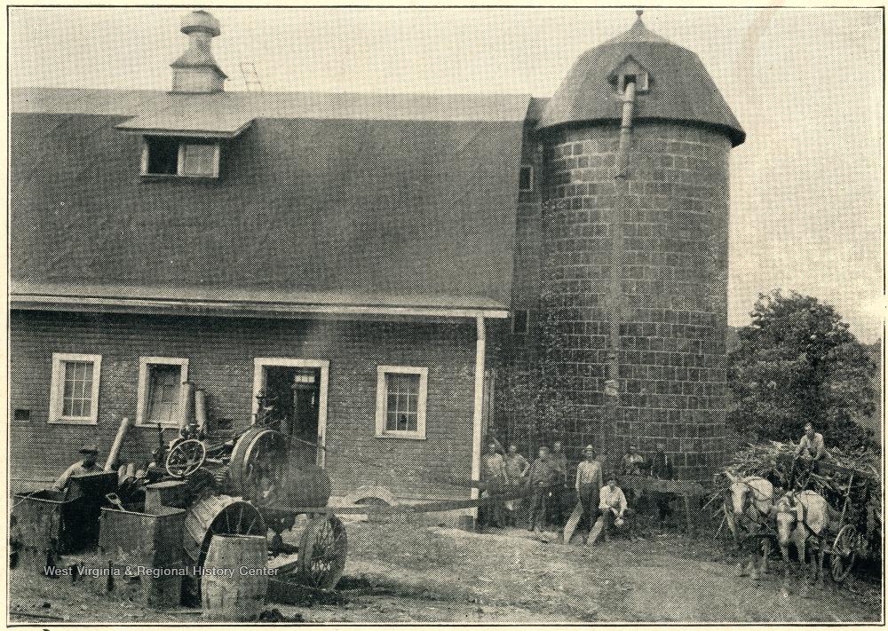 Building, Photograph, Plant, House