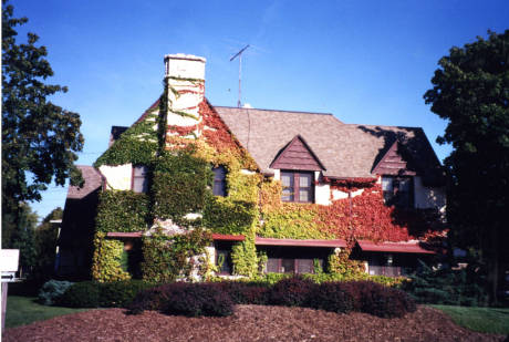 The Walter Young Center, October 2000.