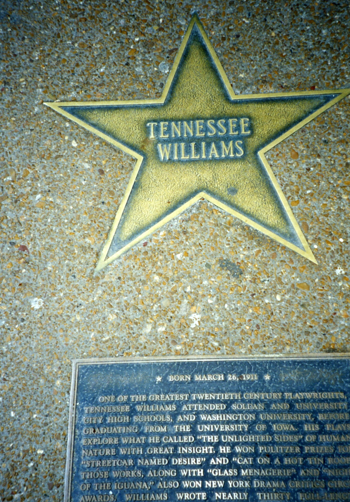 The star and plaque for playwright Tennessee Williams