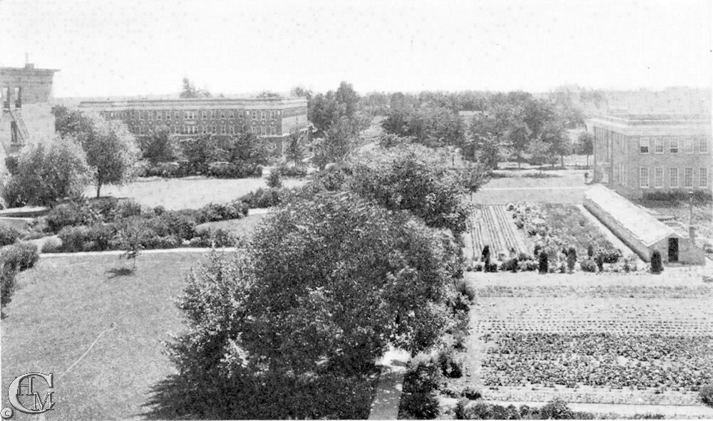 View of the garden looking west.