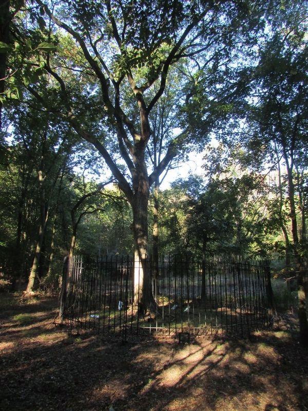 Location of Dead Treaty Oak