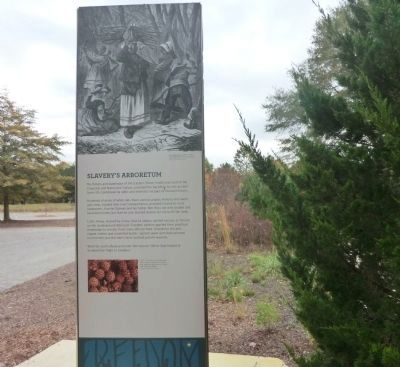 The arboretum provides a number of signs that interpret the history of the area as it relates to the experiences of escaped slaves.