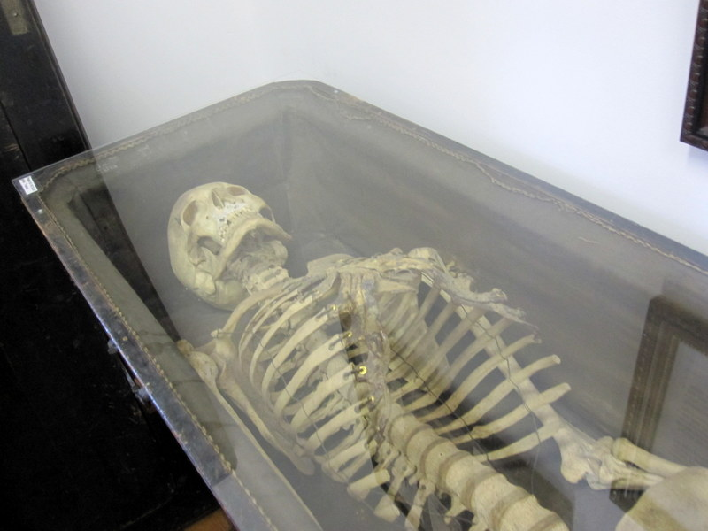 The skeleton of ex-Odd Fellow member George is available to view at the house.