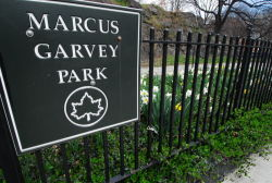 Marcus Garvey Park (Photographed by Malcolm Pinckney)