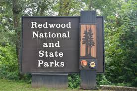 The National Park Service and the State of California manage the Redwood forests which run along the Pacific Coast.