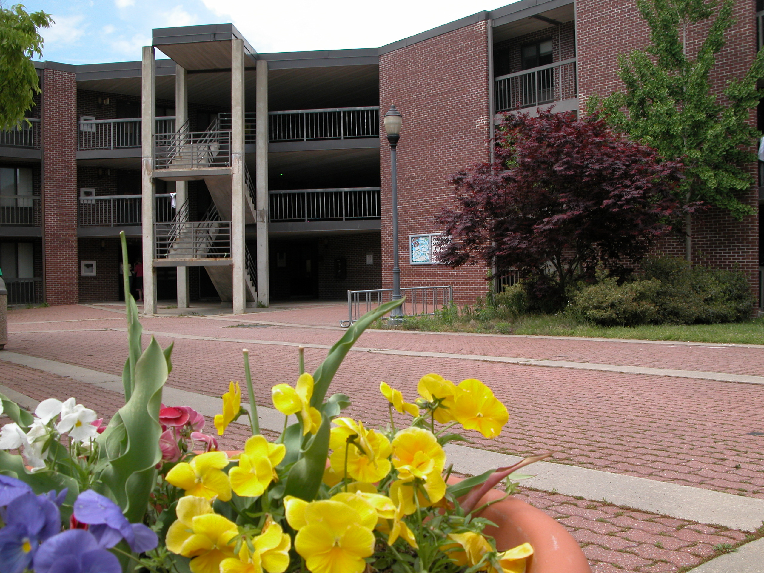 St. Martin Hall - From Chesapeake Hall, 2004
