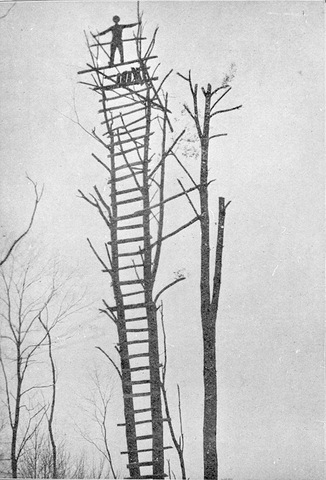 A primitive early fire observation tower at Turkey Mountain, Webster County. These were replaced by more permanent structures in the 1920s.