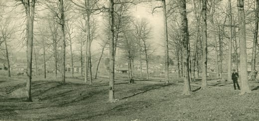 Black and white photo of Dunn Woods with homes that can be seen through the woods and a man standing on a boardwalk to the right