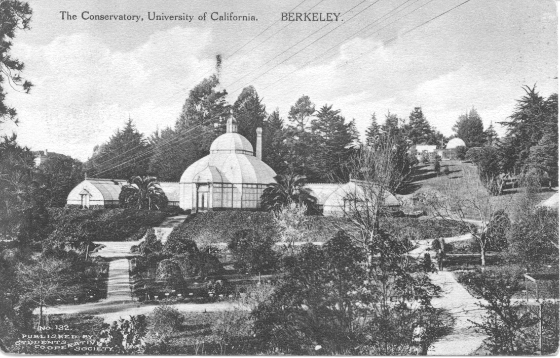 The glasshouse-style conservatory at the University of California Botanical Garden at Berkeley (1894), modeled after the Crystal Palace in London, England