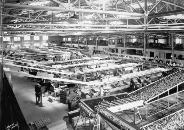 Historical photo of largest orange warehouse of Winter Garden.