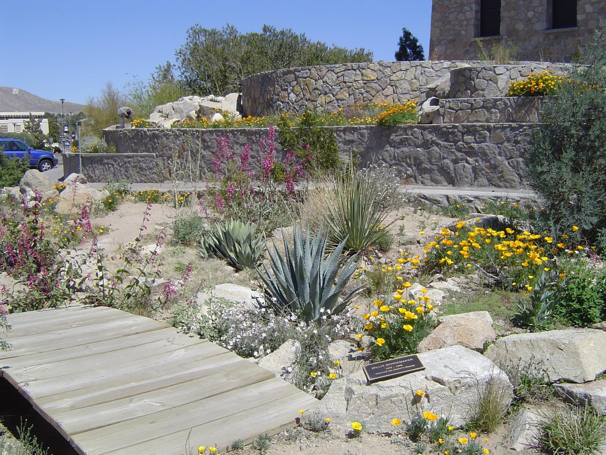 The Chihuahuan Desert Gardens