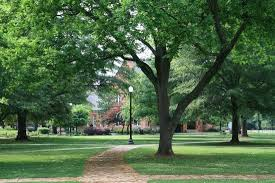 Old Quadrangle (Woods Quad) from one view.