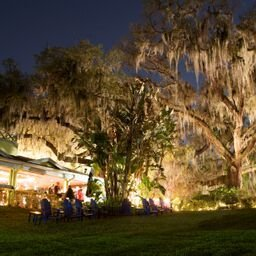One of the beautiful aspects of the Enzian theater and Eden bar is the landscape of decades old moss draped trees. These trees shade the patio and lawn where you can lounge before or after a meal if you a waiting for a movie, or just want to relax.