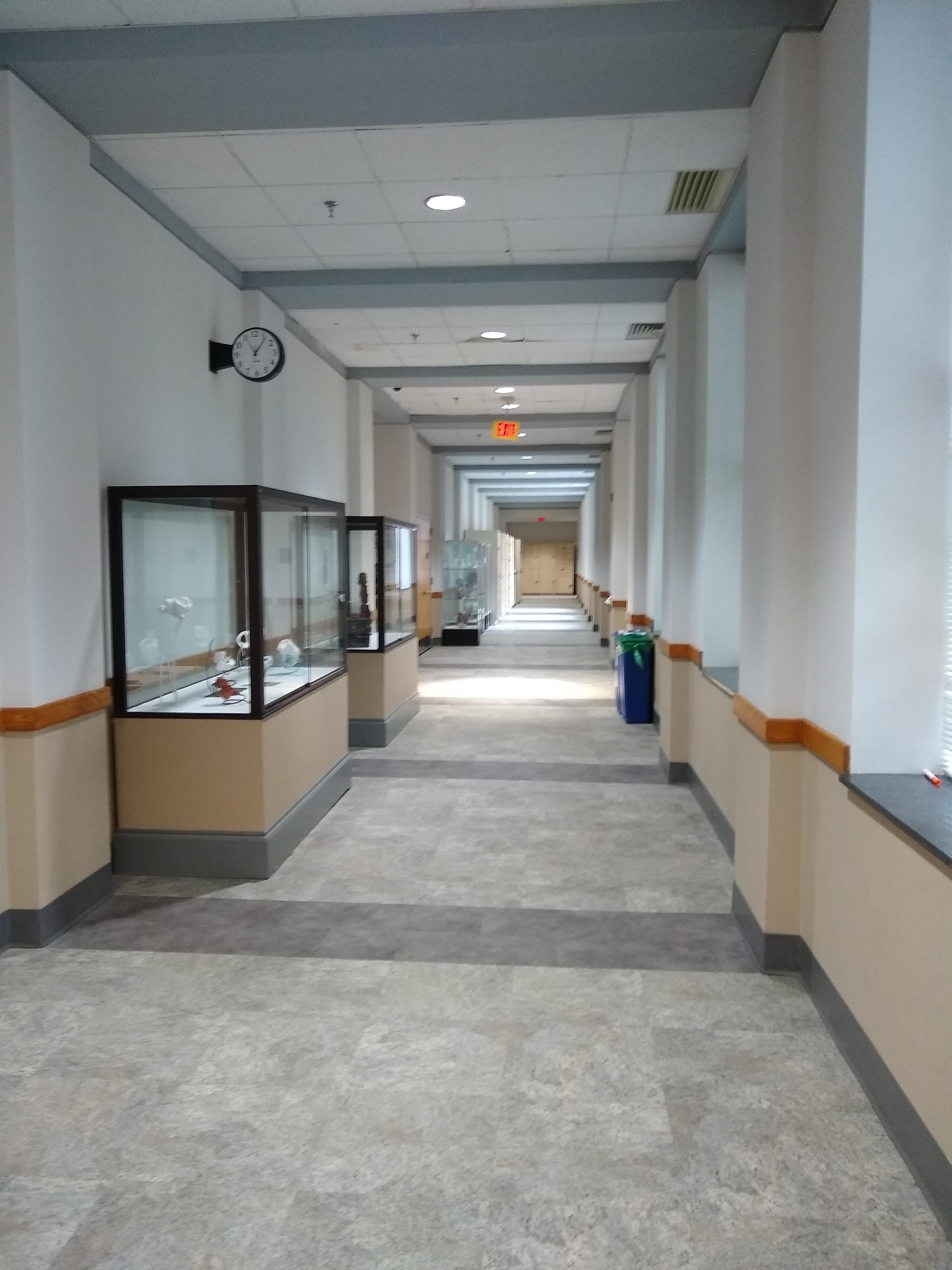 Hallway with art displays, 2020