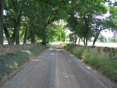 Wellborne/Millville Road