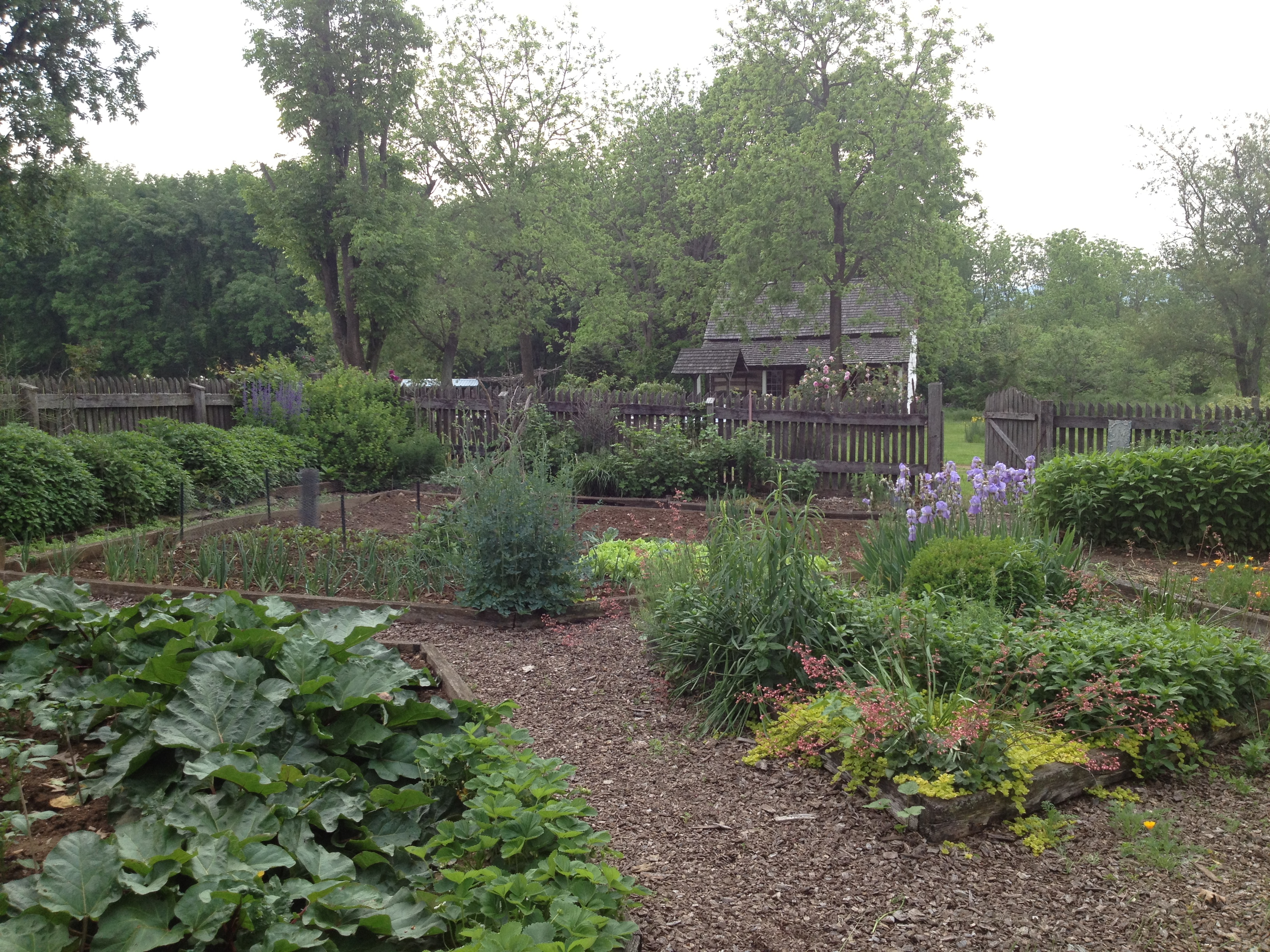 German four square garden with Negley Log House in the background. This demonstration garden includes fruit, vegetables, herbs and ornamental flowers. The site also boasts several old variety apple trees.