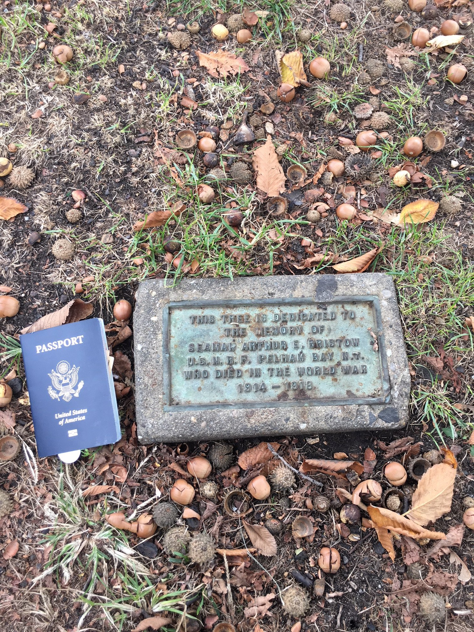 Plaque next to U.S. passport for size.