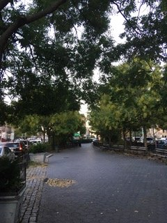 View of Donnellan Square, Hamilton Heights