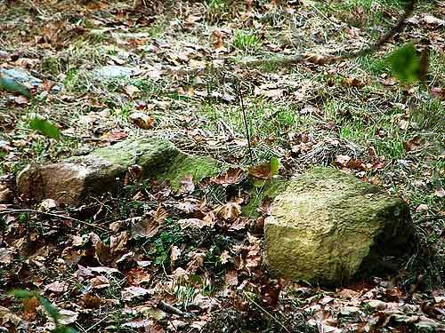 The upping stone found beside the remains of the Stringtown community church. It was used by ladies and short men to get onto their horses. (Photo credit: Suzanne McMinn/chickensintheroad.com)