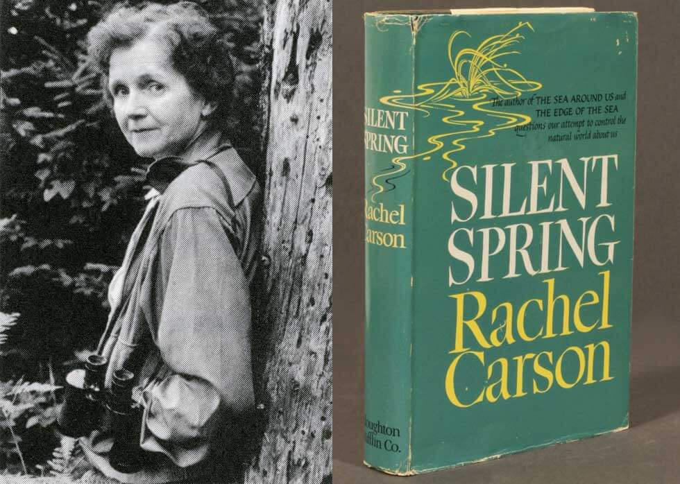 Rachel Carson and her most famous book, Silent Spring. It detailed why the harmful pesticide DDT was toxic to the environment.