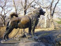 The monument is surmounted by a large statue, in bronze, of Balto.