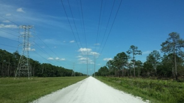 The powerline road that leads straight to the St. Johns River.